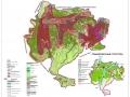 Градостроительное зонирование территории